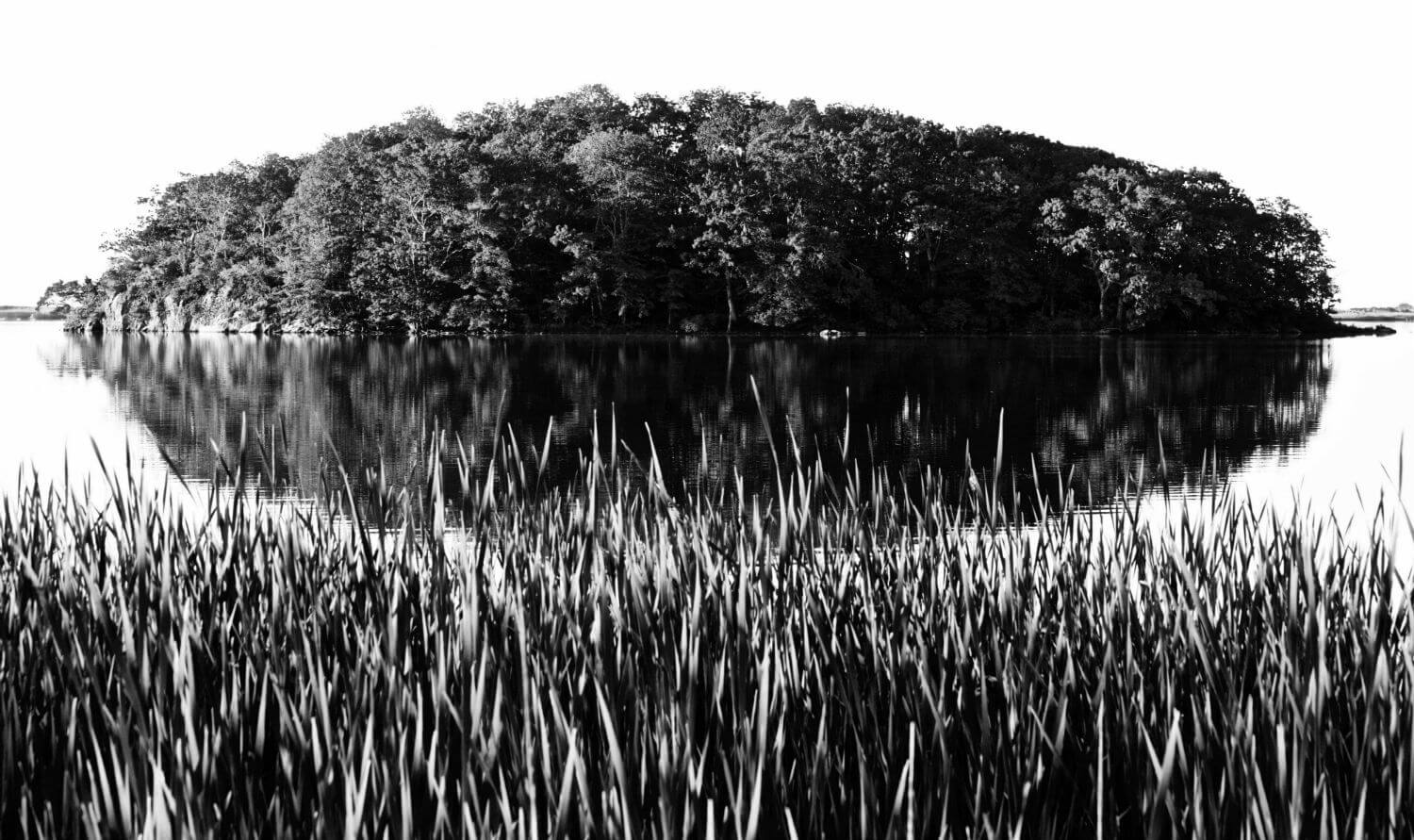 "Island B&W I, 22"" x 38"" tree covered island liz fiedorek fine art photography ny rhode island"