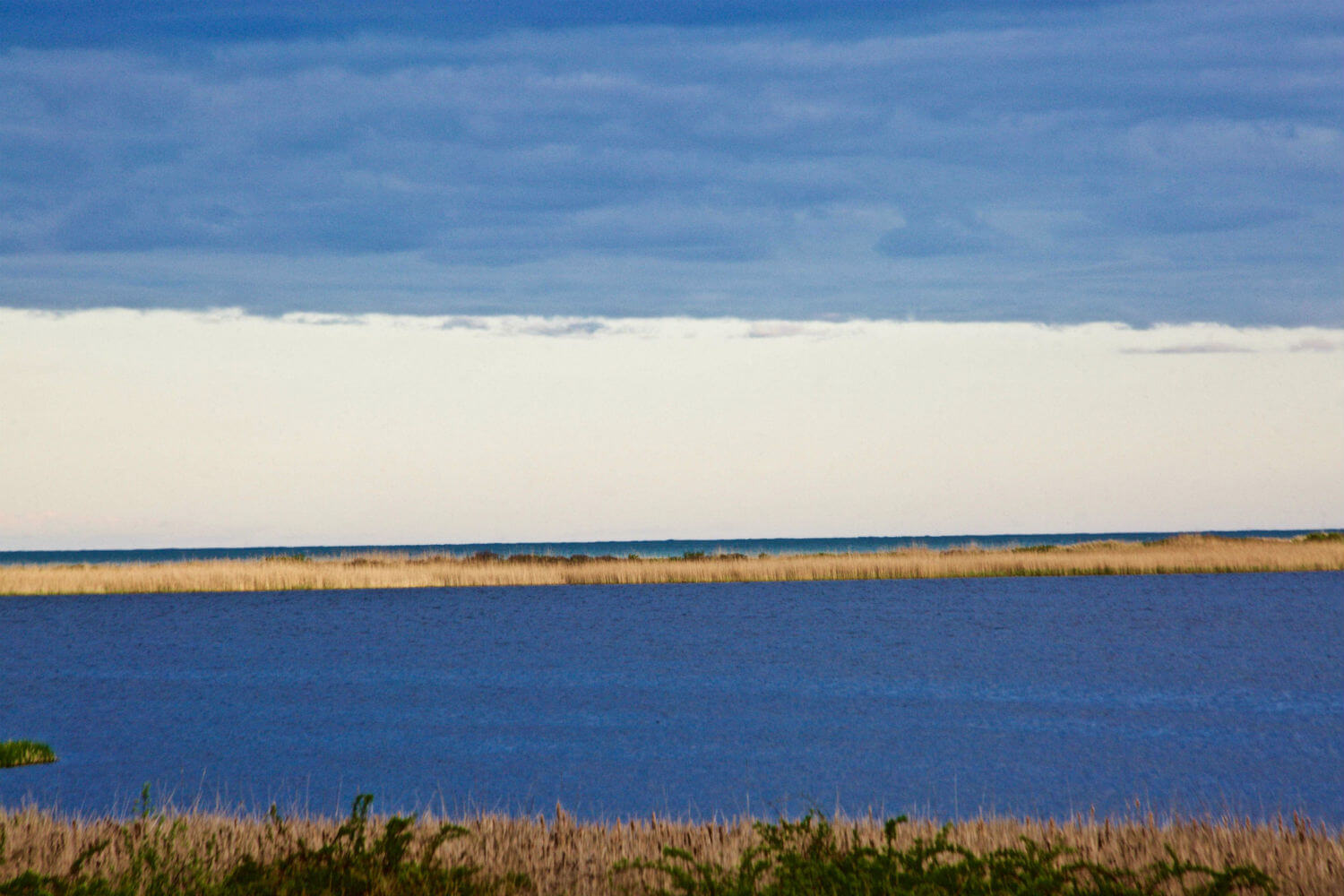 "Briggs Marsh, 40"" x 55"" marsh and shoreline liz fiedorek fine art photography ny rhode island"